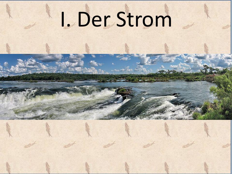 Gegen den Strom schwimmen III.Halt in der Strömung: Der Anker Hbr.