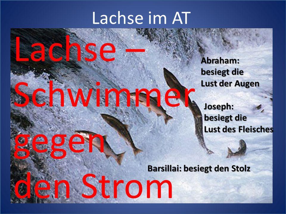 Lachse im AT Abraham: besiegt die Lust der Augen Joseph: besiegt die Lust des Fleisches Barsillai: besiegt den Stolz Lachse – Schwimmer gegen den Strom