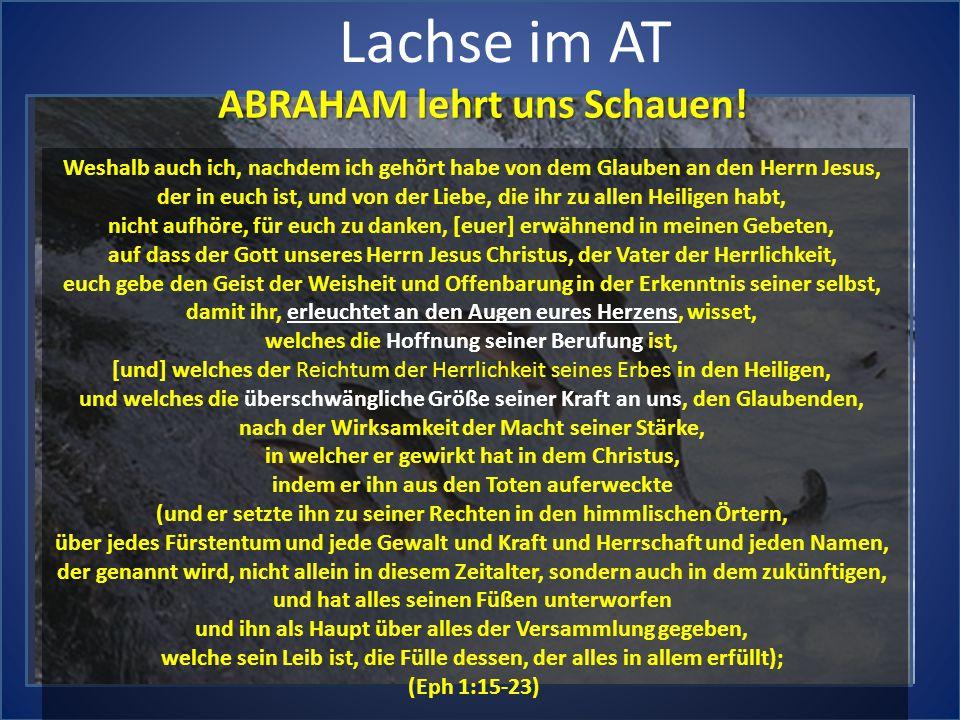 Lachse im AT ABRAHAM lehrt uns Schauen! Weshalb auch ich, nachdem ich gehört habe von dem Glauben an den Herrn Jesus, der in euch ist, und von der Lie