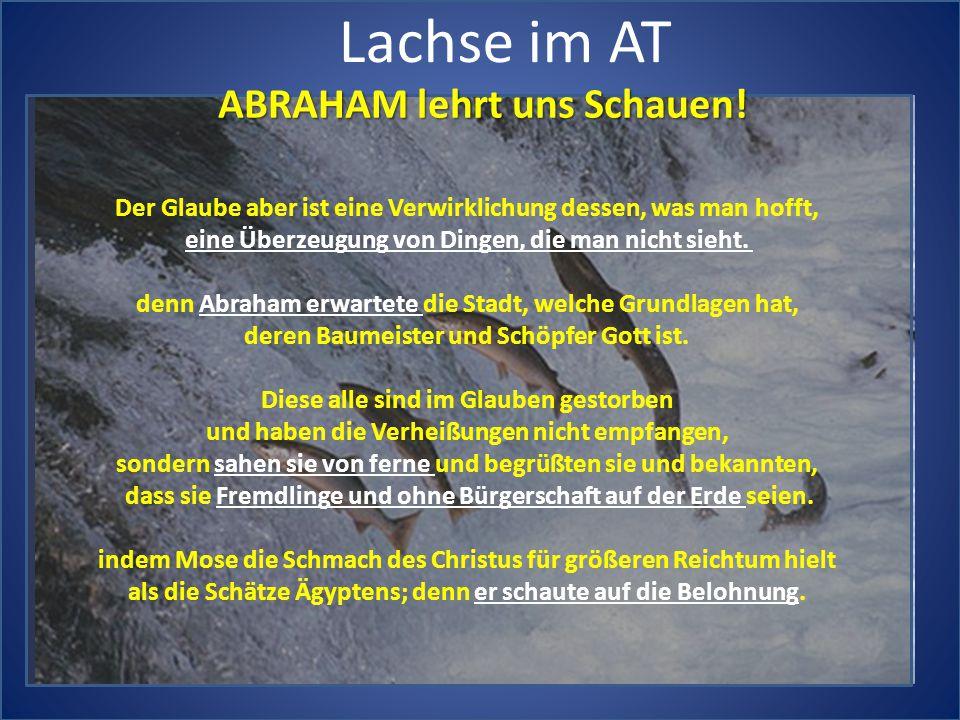 Lachse im AT Der Glaube aber ist eine Verwirklichung dessen, was man hofft, eine Überzeugung von Dingen, die man nicht sieht. denn Abraham erwartete d