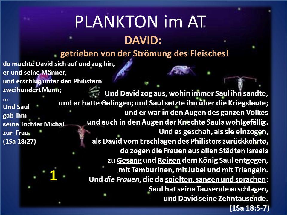 PLANKTON im AT Und David zog aus, wohin immer Saul ihn sandte, und er hatte Gelingen; und Saul setzte ihn über die Kriegsleute; und er war in den Auge