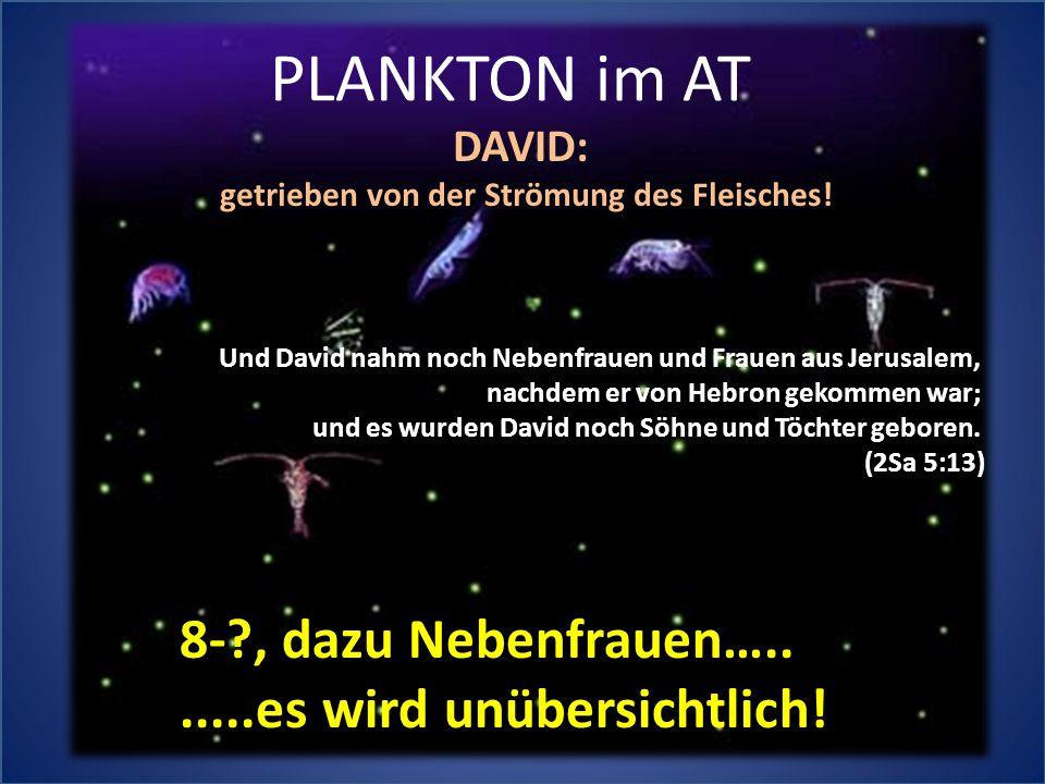 PLANKTON im AT Und David nahm noch Nebenfrauen und Frauen aus Jerusalem, nachdem er von Hebron gekommen war; und es wurden David noch Söhne und Töchter geboren.