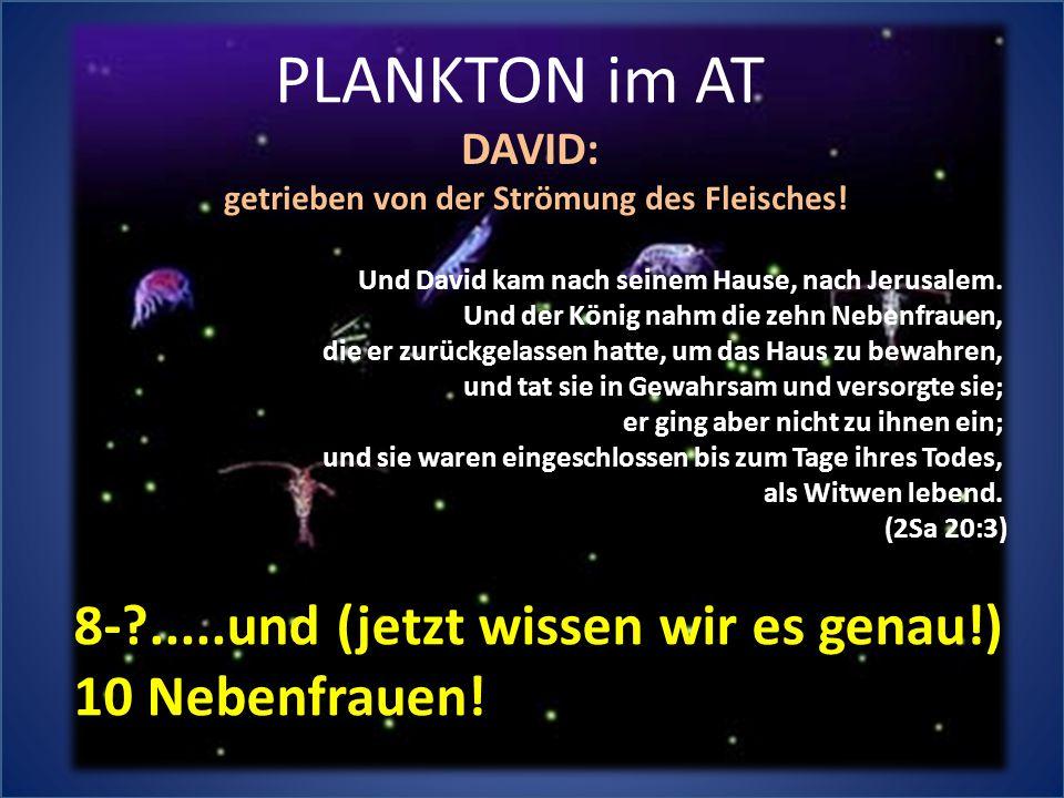 PLANKTON im AT Und David kam nach seinem Hause, nach Jerusalem. Und der König nahm die zehn Nebenfrauen, die er zurückgelassen hatte, um das Haus zu b
