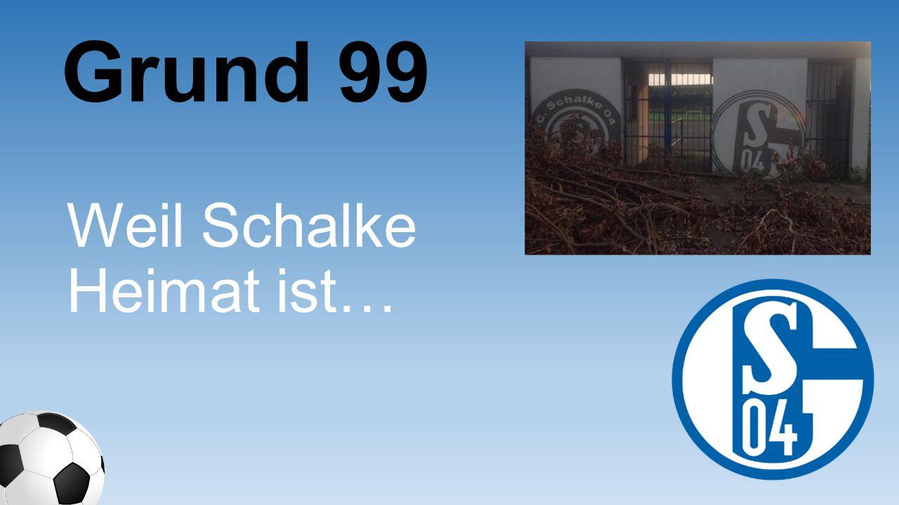 Weil Schalke Heimat ist… Grund 99