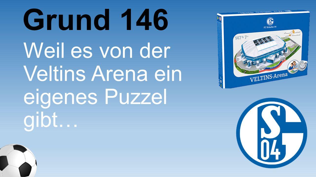 Weil es von der Veltins Arena ein eigenes Puzzel gibt… Grund 146