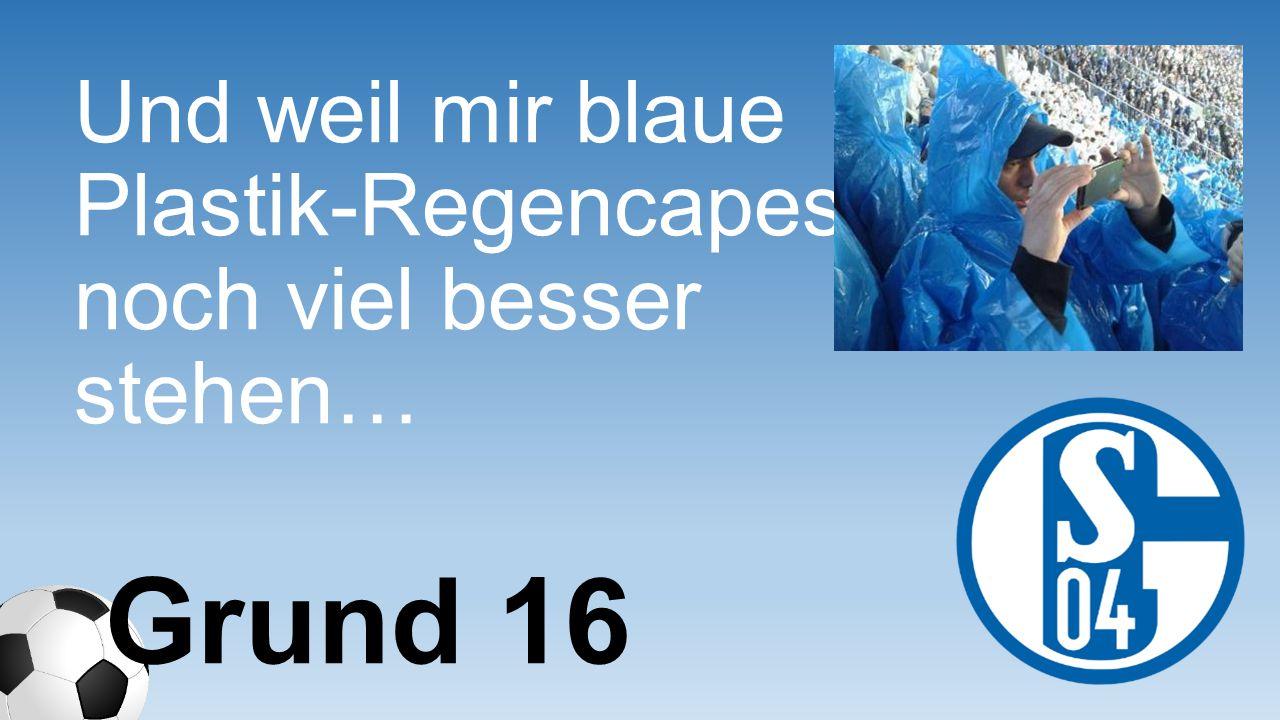 Und weil mir blaue Plastik-Regencapes noch viel besser stehen… Grund 16