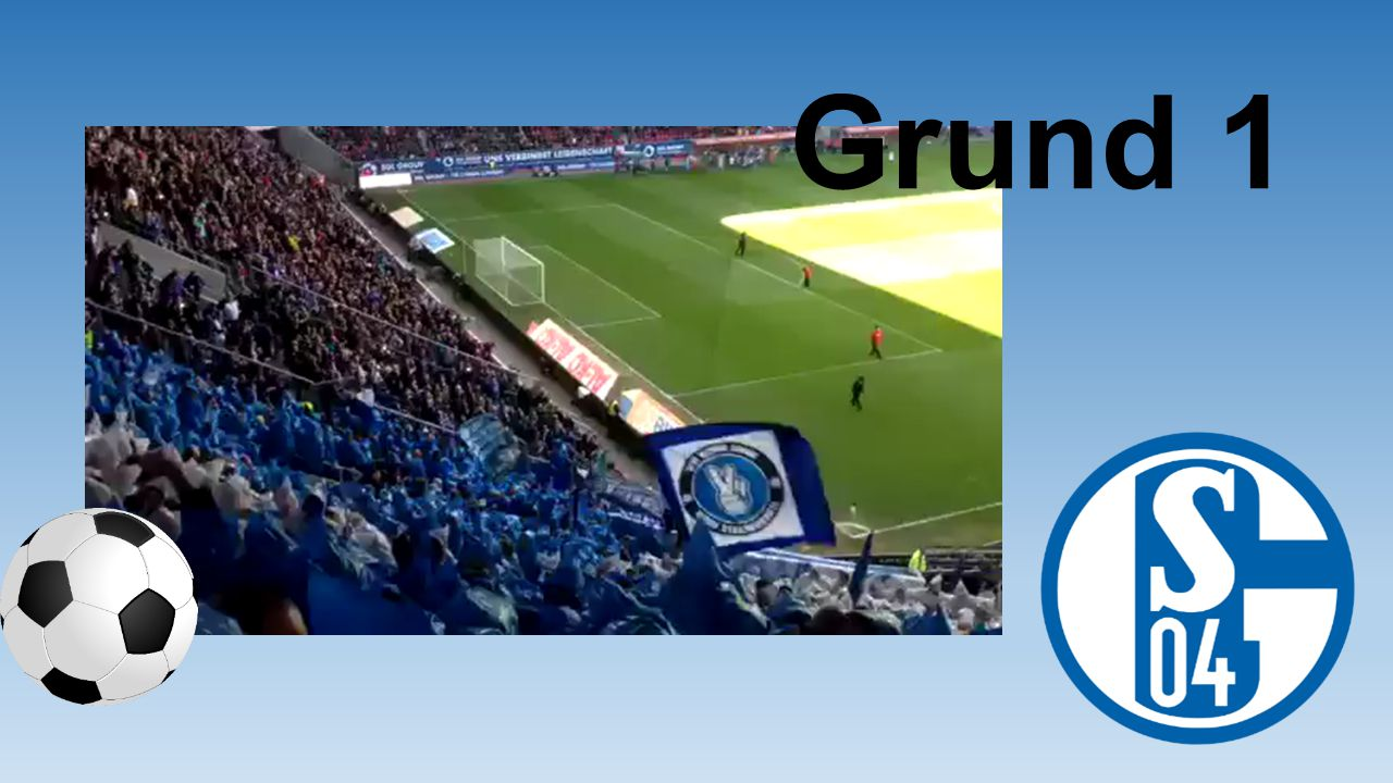 Weil ich für Schalke schon die ein oder andere Schlägerei ertragen musste… Grund 142