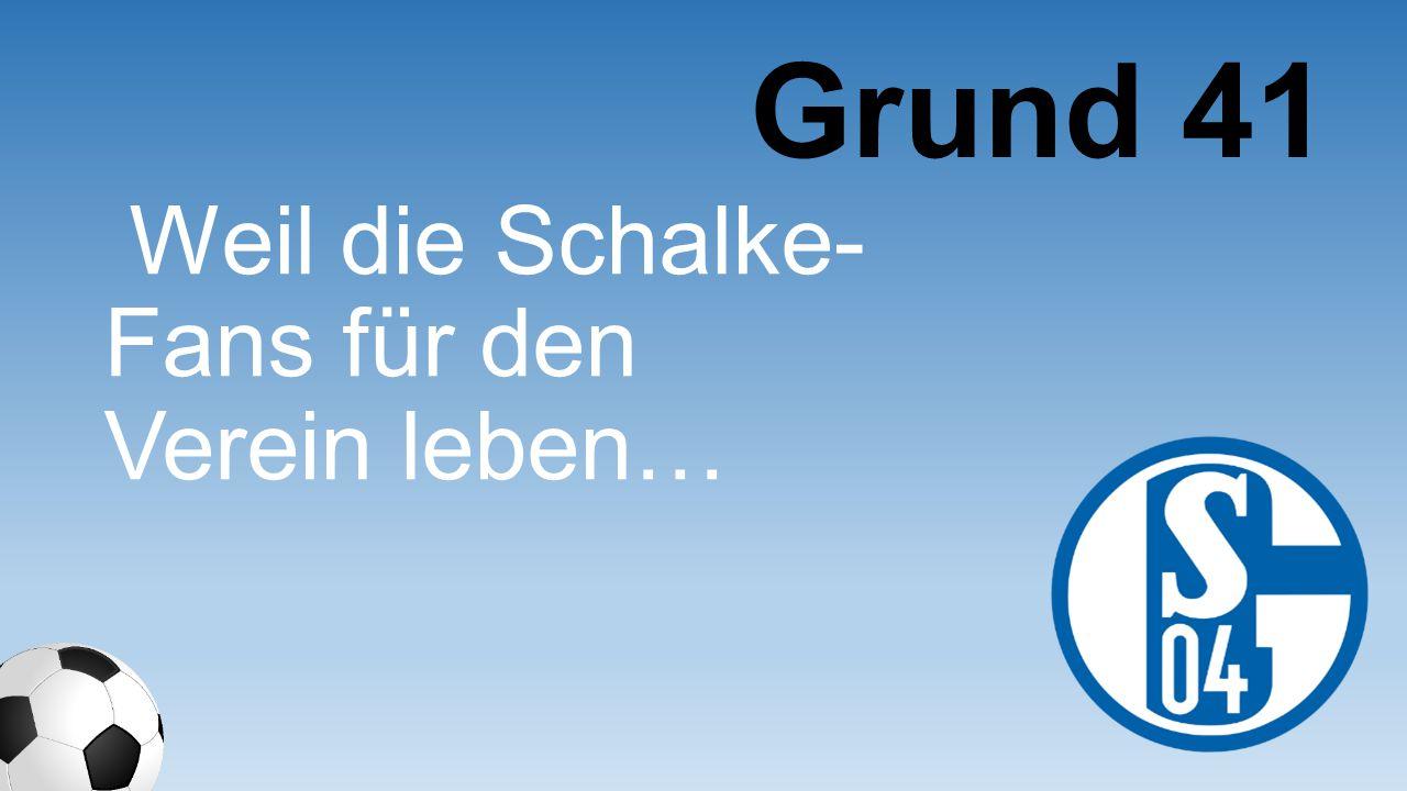 Weil die Schalke- Fans für den Verein leben… Grund 41