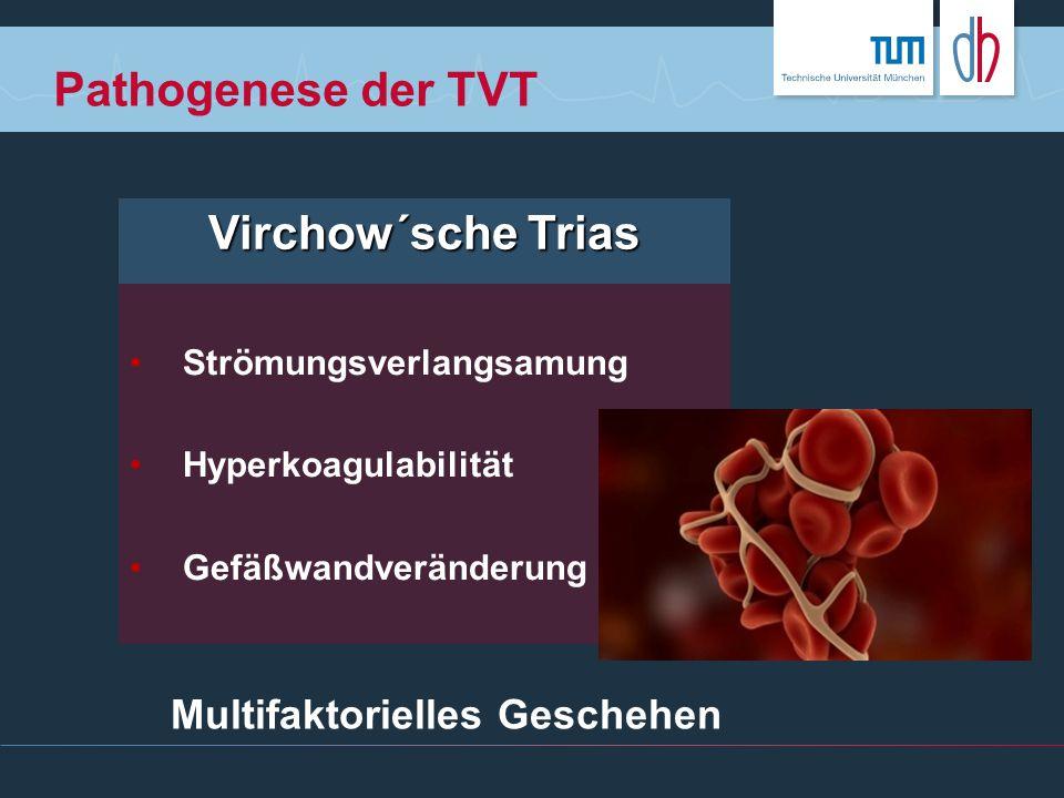 Pathogenese der TVT Virchow´sche Trias Strömungsverlangsamung Hyperkoagulabilität Gefäßwandveränderung Multifaktorielles Geschehen
