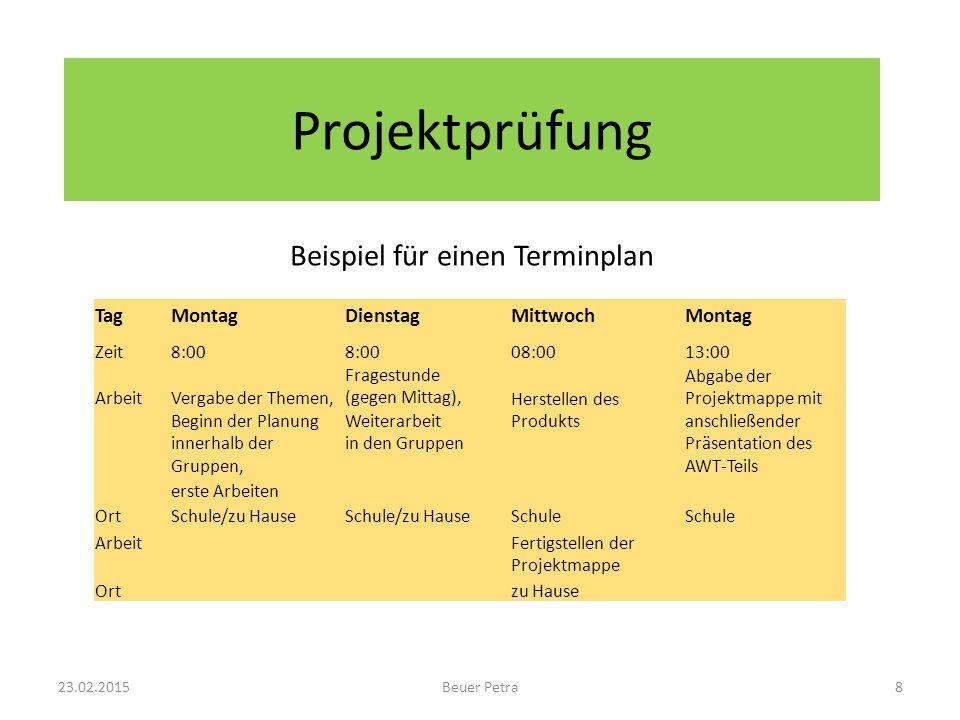 Projektprüfung Beispiel für einen Terminplan TagMontagDienstagMittwochMontag Zeit8:00 08:0013:00 ArbeitVergabe der Themen, Fragestunde (gegen Mittag),