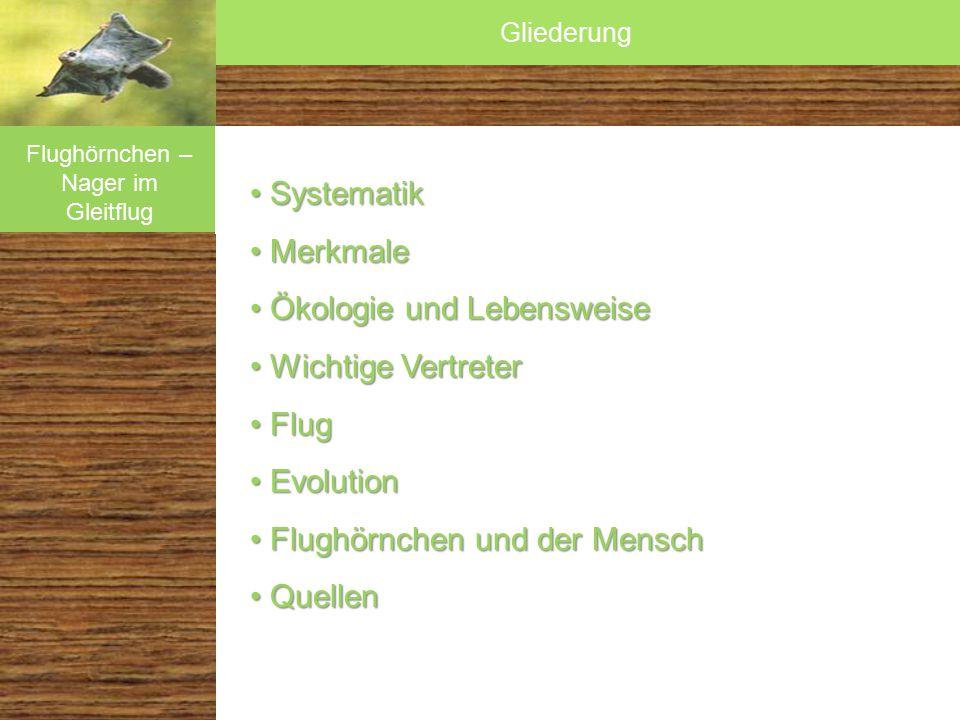 Systematik SystematikMerkmale Ökologie und Lebensweise Wichtige Vertreter Flug Flug Evolution Evolution Flughörnchen und Mensch Flughörnchen und Mensch Säugetiere vor Vögeln in der Luft.