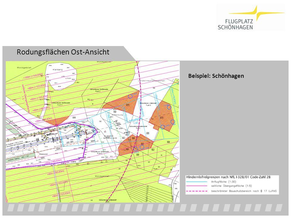 Rodungsflächen Ost-Ansicht Beispiel: Schönhagen