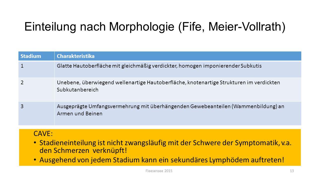 Einteilung nach Morphologie (Fife, Meier-Vollrath) CAVE: Stadieneinteilung ist nicht zwangsläufig mit der Schwere der Symptomatik, v.a. den Schmerzen