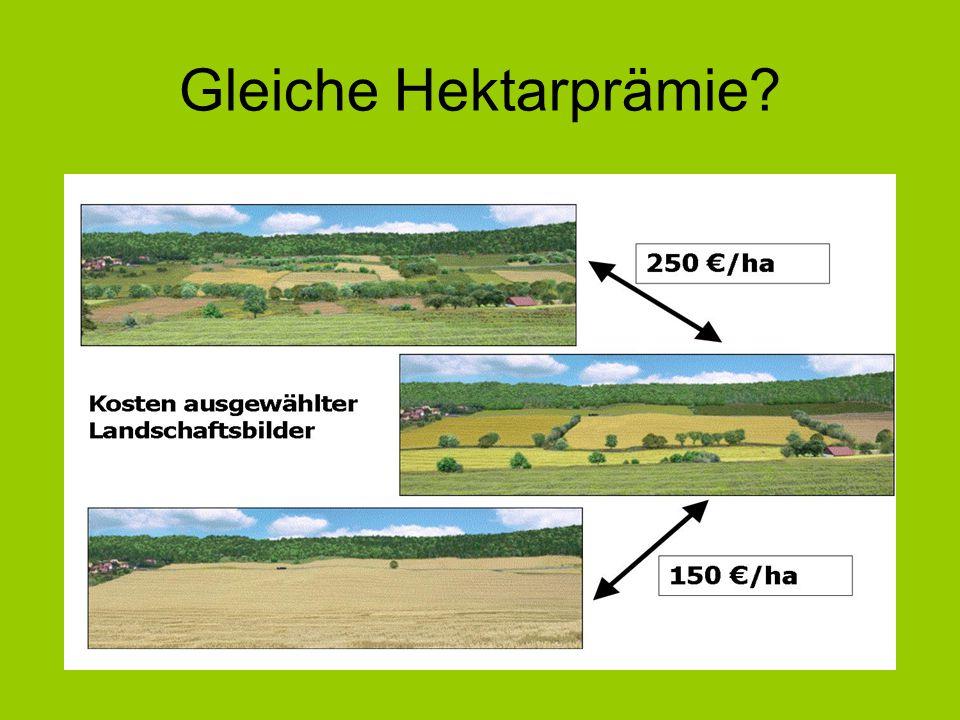 Gleiche Hektarprämie?