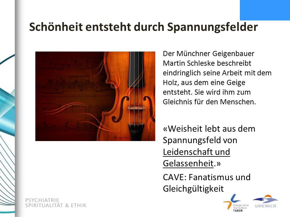 Schönheit entsteht durch Spannungsfelder Der Münchner Geigenbauer Martin Schleske beschreibt eindringlich seine Arbeit mit dem Holz, aus dem eine Geige entsteht.