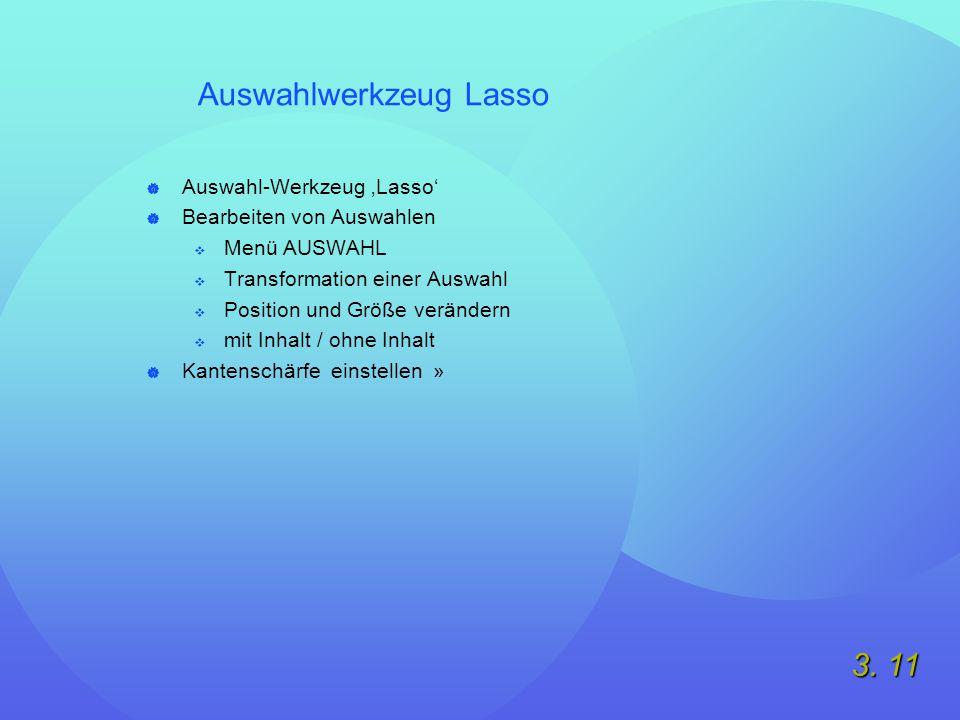 3. 11 Auswahlwerkzeug Lasso  Auswahl-Werkzeug 'Lasso'  Bearbeiten von Auswahlen  Menü AUSWAHL  Transformation einer Auswahl  Position und Größe v