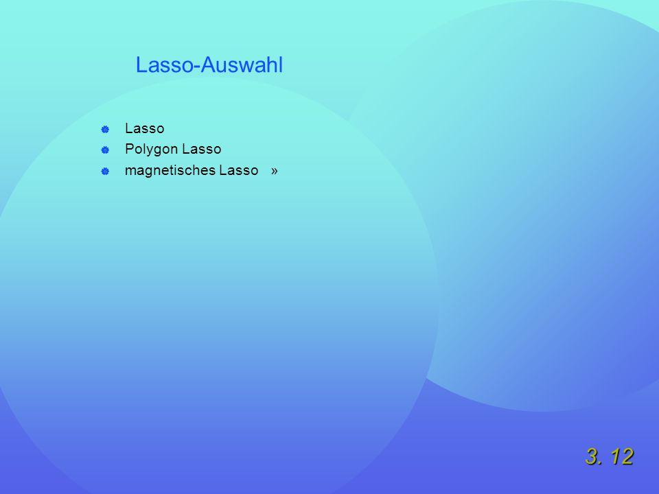 3. 12 Lasso-Auswahl  Lasso  Polygon Lasso  magnetisches Lasso »