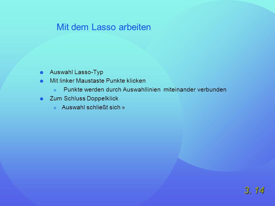 3. 14 Mit dem Lasso arbeiten  Auswahl Lasso-Typ  Mit linker Maustaste Punkte klicken  Punkte werden durch Auswahllinien miteinander verbunden  Zum