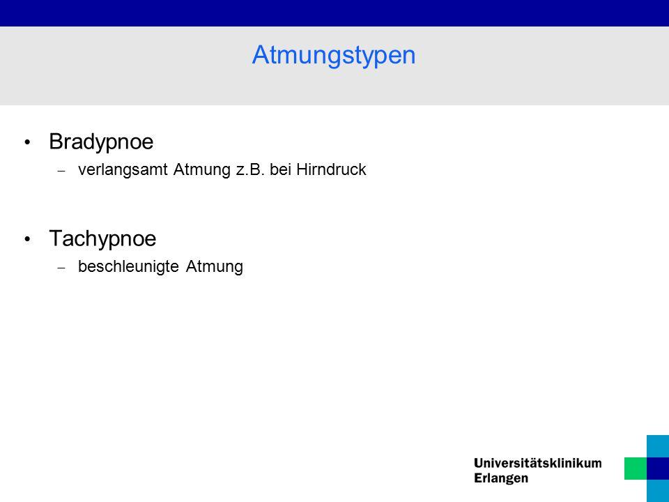 Bradypnoe  verlangsamt Atmung z.B. bei Hirndruck Tachypnoe  beschleunigte Atmung Atmungstypen