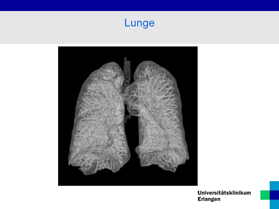 Lungenkaverne Granulom Tuberkulose