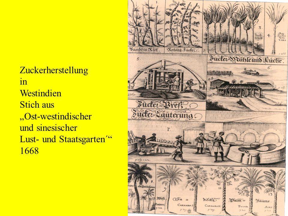 """Zuckerherstellung in Westindien Stich aus """"Ost-westindischer und sinesischer Lust- und Staatsgarten´ 1668"""