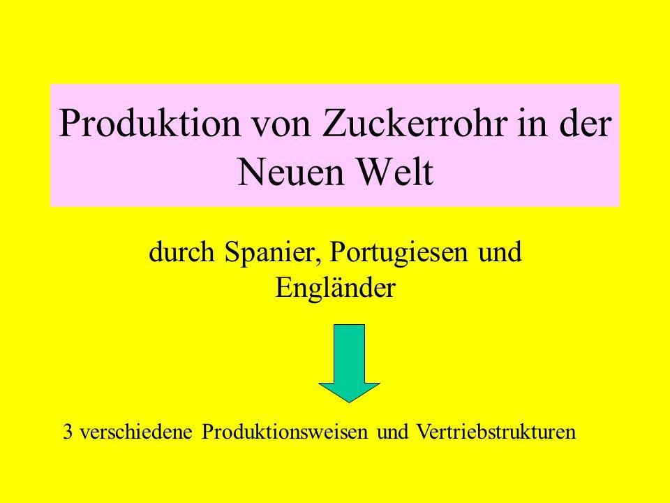 Produktion von Zuckerrohr in der Neuen Welt durch Spanier, Portugiesen und Engländer 3 verschiedene Produktionsweisen und Vertriebstrukturen