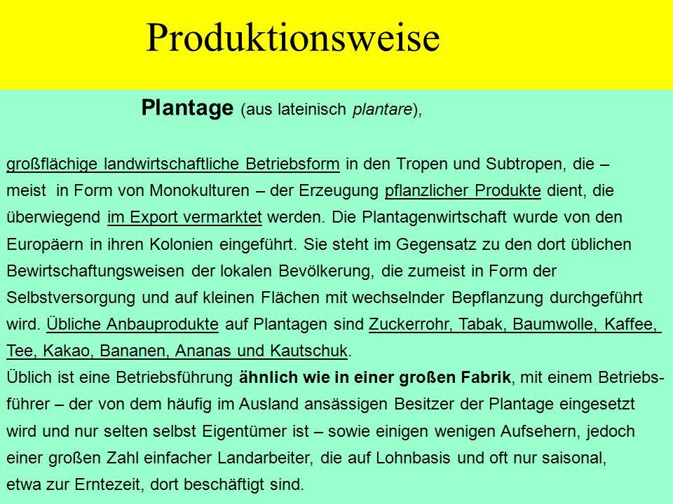Plantage (aus lateinisch plantare), großflächige landwirtschaftliche Betriebsform in den Tropen und Subtropen, die – meist in Form von Monokulturen – der Erzeugung pflanzlicher Produkte dient, die überwiegend im Export vermarktet werden.