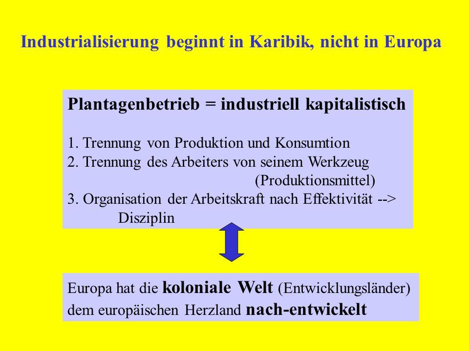 Plantagenbetrieb = industriell kapitalistisch 1. Trennung von Produktion und Konsumtion 2. Trennung des Arbeiters von seinem Werkzeug (Produktionsmitt