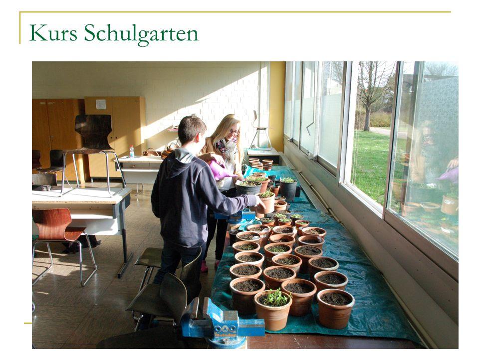 Kurs Schulgarten