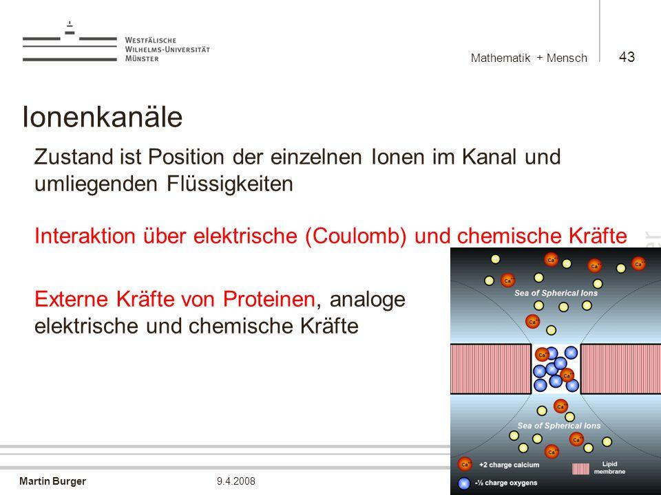 Martin Burger Mathematik + Mensch 43 9.4.2008 Ionenkanäle Zustand ist Position der einzelnen Ionen im Kanal und umliegenden Flüssigkeiten Interaktion über elektrische (Coulomb) und chemische Kräfte Externe Kräfte von Proteinen, analoge elektrische und chemische Kräfte
