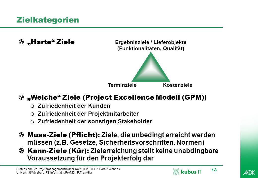 Professionelles Projektmanagement in der Praxis, © 2008 Dr. Harald Wehnes Universität Würzburg, FB Informatik, Prof. Dr. P.Tran-Gia 13 Zielkategorien