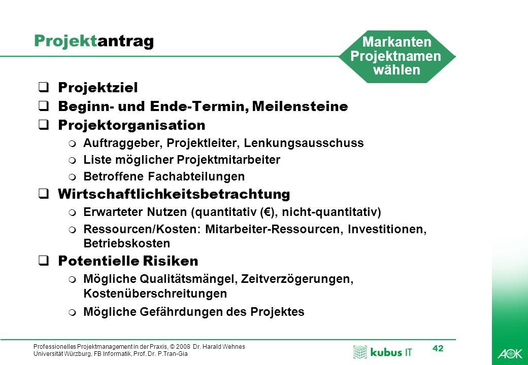 Professionelles Projektmanagement in der Praxis, © 2008 Dr. Harald Wehnes Universität Würzburg, FB Informatik, Prof. Dr. P.Tran-Gia 42 Projektantrag 
