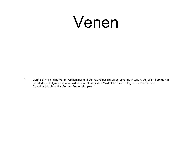 Venen Durchschnittlich sind Venen weitlumiger und du ̈ nnwandiger als entsprechende Arterien. Vor allem kommen in der Media mittelgroßer Venen anstell
