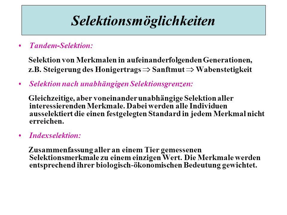 Selektionsmöglichkeiten Tandem-Selektion: Selektion von Merkmalen in aufeinanderfolgenden Generationen, z.B.
