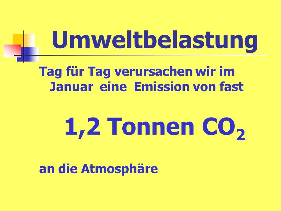 Umweltbelastung Tag für Tag verursachen wir im Januar eine Emission von fast 1,2 Tonnen CO 2 an die Atmosphäre