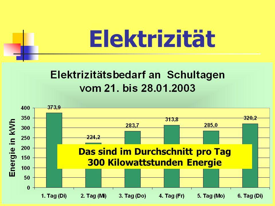 300 Kilowattstunden Energie pro Tag Das bedeutet: 42 Euro Kosten pro Tag und 180 kg CO 2 -Abgabe an die Umwelt