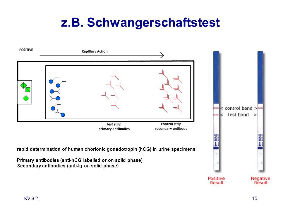 KV 8.215 z.B. Schwangerschaftstest rapid determination of human chorionic gonadotropin (hCG) in urine specimens Primary antibodies (anti-hCG labelled