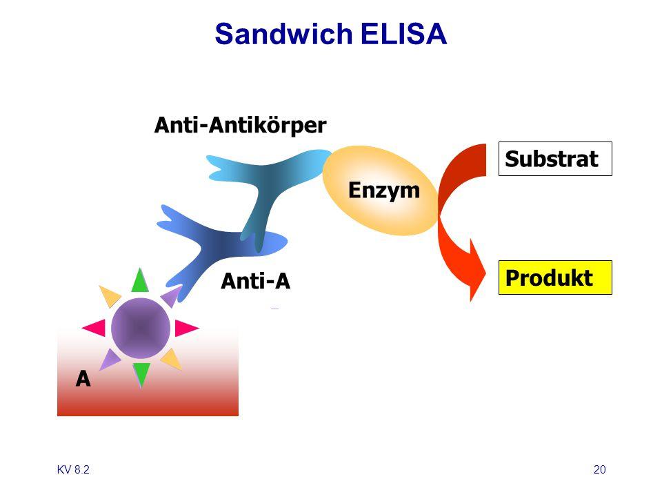 KV 8.220 Sandwich ELISA Anti-A Anti-Antikörper A Enzym Substrat Produkt
