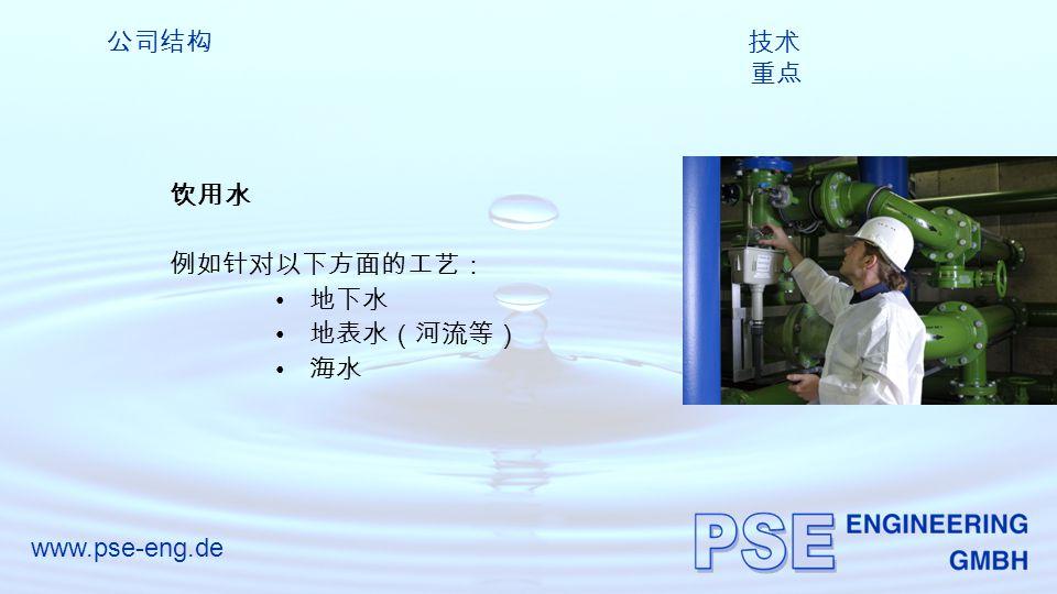 www.pse-eng.de 公司结构 技术 重点 饮用水 例如针对以下方面的工艺: 地下水 地表水(河流等) 海水