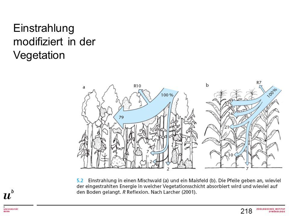 218 Einstrahlung modifiziert in der Vegetation