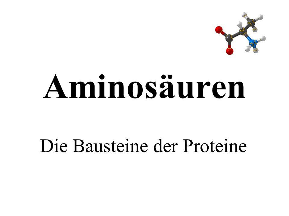Verständnis des Zusammenhangs von Struktur, Eigenschaften und Funktion Aminosäuren sind: wichtige Naturstoffe mit eigener biologischer Funktion und Bausteine der Proteine Grund