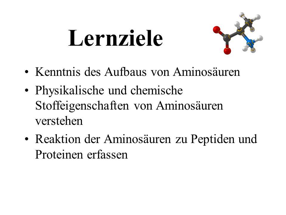 Lernziele Kenntnis des Aufbaus von Aminosäuren Physikalische und chemische Stoffeigenschaften von Aminosäuren verstehen Reaktion der Aminosäuren zu Peptiden und Proteinen erfassen