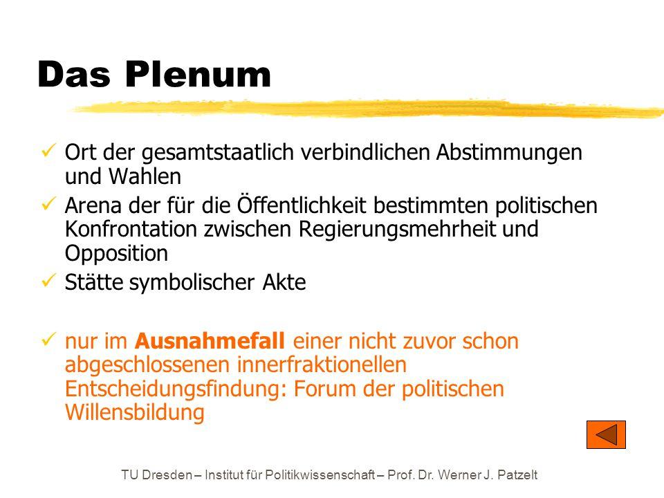 TU Dresden – Institut für Politikwissenschaft – Prof. Dr. Werner J. Patzelt Das Plenum Ort der gesamtstaatlich verbindlichen Abstimmungen und Wahlen A