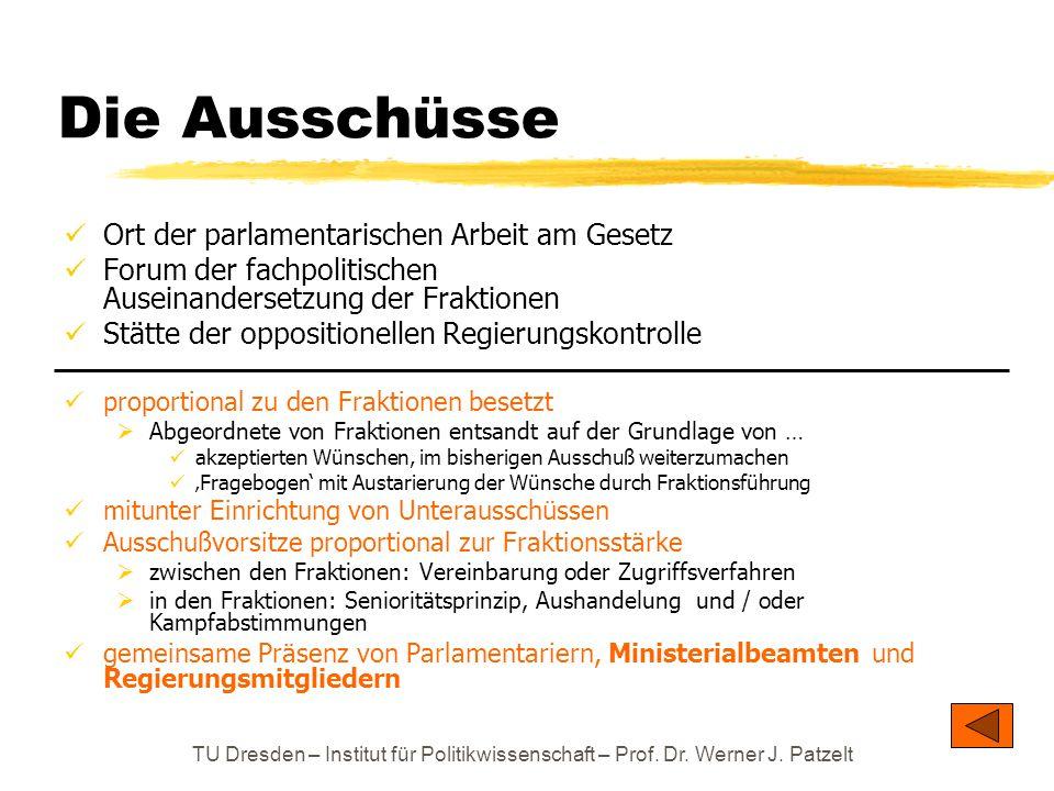 TU Dresden – Institut für Politikwissenschaft – Prof. Dr. Werner J. Patzelt Die Ausschüsse Ort der parlamentarischen Arbeit am Gesetz Forum der fachpo