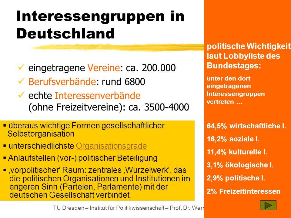 TU Dresden – Institut für Politikwissenschaft – Prof. Dr. Werner J. Patzelt Interessengruppen in Deutschland eingetragene Vereine: ca. 200.000 Berufsv