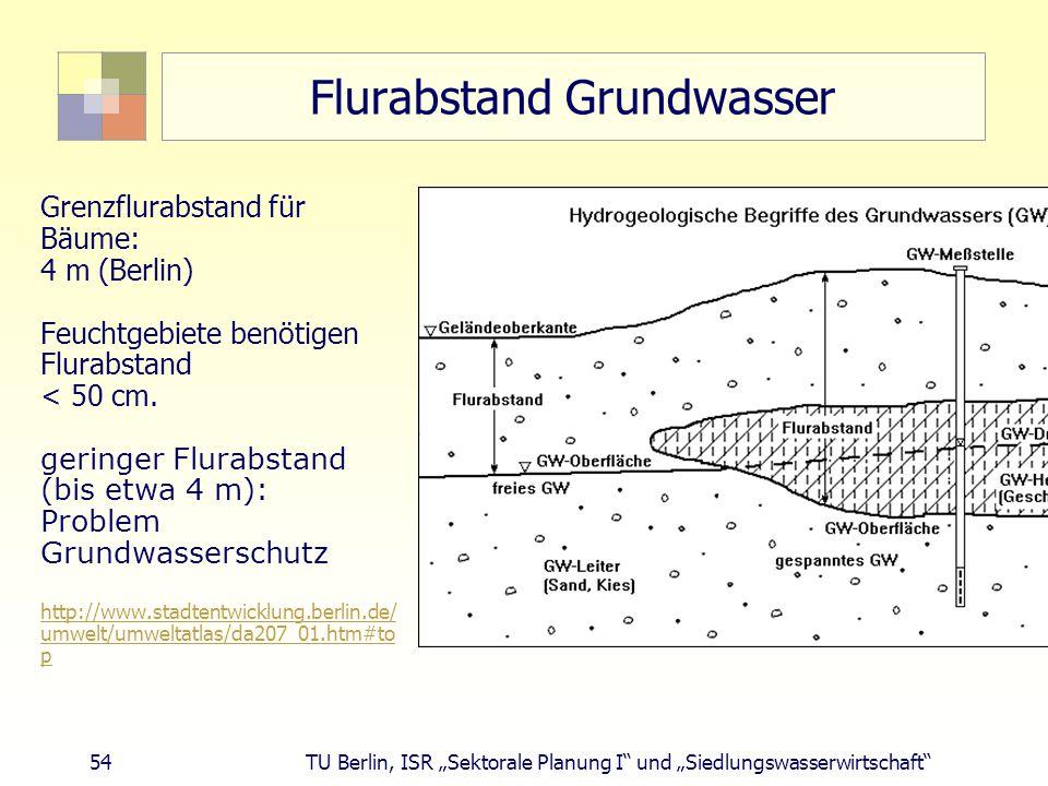 """54 TU Berlin, ISR """"Sektorale Planung I und """"Siedlungswasserwirtschaft Flurabstand Grundwasser Grenzflurabstand für Bäume: 4 m (Berlin) Feuchtgebiete benötigen Flurabstand < 50 cm."""