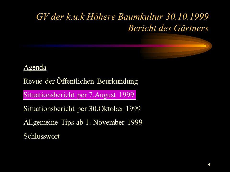 4 Agenda Revue der Öffentlichen Beurkundung Situationsbericht per 7.August 1999 Situationsbericht per 30.Oktober 1999 Allgemeine Tips ab 1.