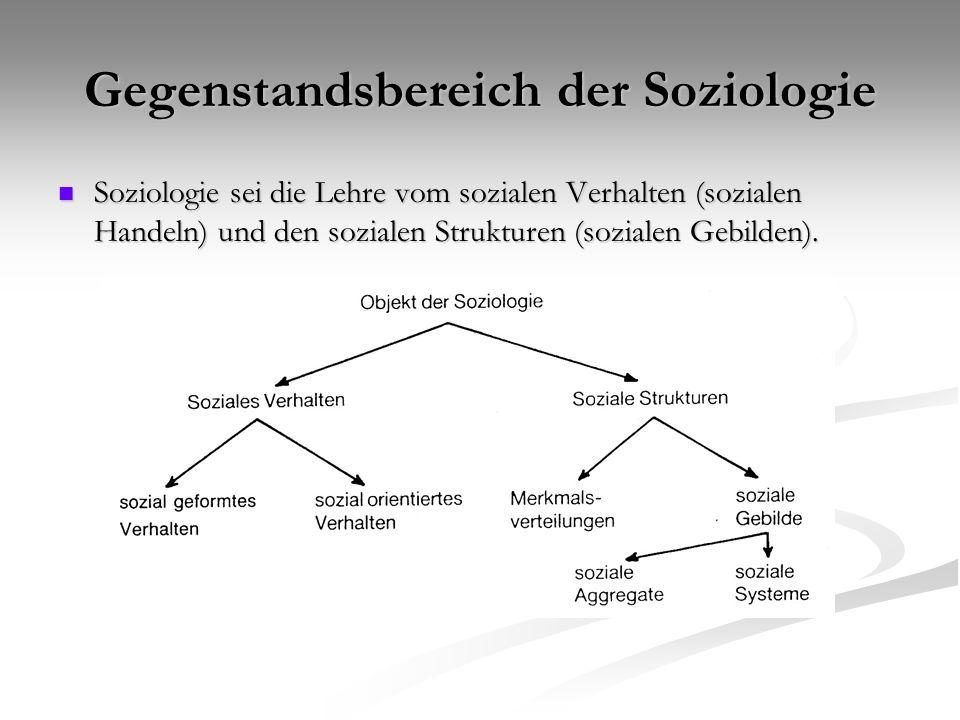 Struktur und Verhalten Einfluß der Struktur auf menschliches Verhalten Einfluß der Struktur auf menschliches Verhalten X als Randbedingungen, und S als Sozialstruktur X als Randbedingungen, und S als Sozialstruktur Strukturen als Verankerungspunkte der Orientierung und als einschränkende Zwänge (Constraints) Strukturen als Verankerungspunkte der Orientierung und als einschränkende Zwänge (Constraints)