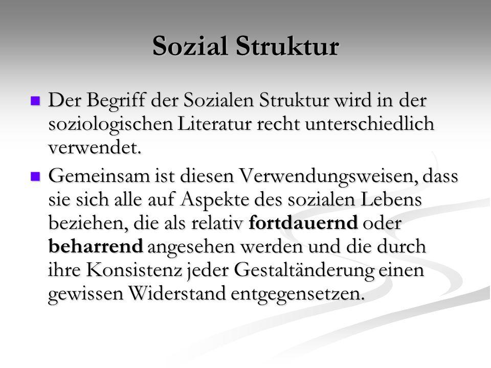 Sozial Struktur Der Begriff der Sozialen Struktur wird in der soziologischen Literatur recht unterschiedlich verwendet. Der Begriff der Sozialen Struk