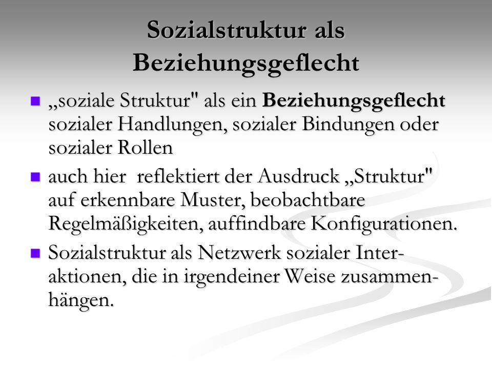 "Sozialstruktur als Beziehungsgeflecht ""soziale Struktur"
